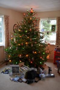 Lentek Family Christmas 2013